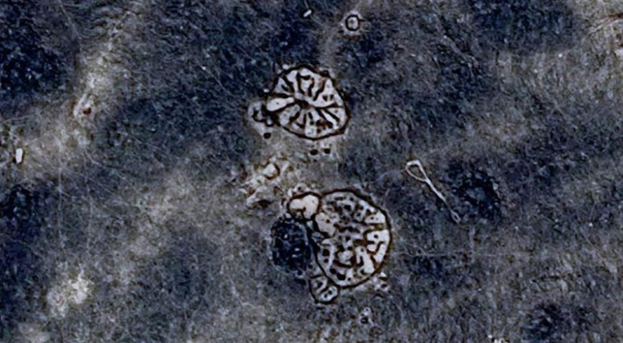 Загадочные геоглифы Иордании В 1927 году летчики обнаружили круговые геоглифы у Вади-Висада, в Черной пустыне Иордании. Один из пилотов, лейтенант Перси Мейтленд, даже опубликовал подробный рассказ о находке в журнале «Античность». Дальнейшие исследования показали целую сеть геоглифов на территории Сирии, Иордании, Саудовской Аравии и Йемена. Им 8500 лет и никто не понимает, почему древние цивилизации из нескольких регионов затратили столько усилий на создание изображений, видимых только с неба.