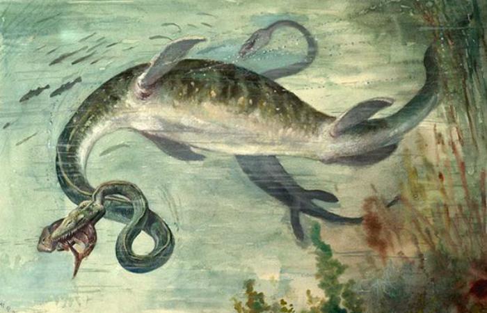 Невероятные монстры, когда-то повелевавшие океаном
