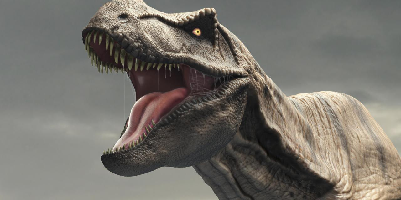 Tyrannosaurus Dinosaur, artwork