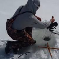Рыбак просто в ужасе от своей добычи. Как такое вообще могло произойти?