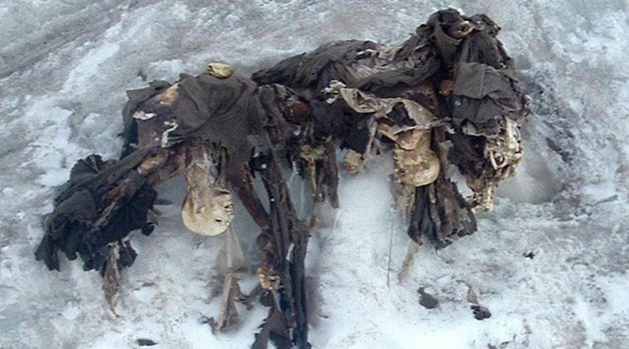 Солдаты Первой мировой войны В начале 2014 года группа скалолазов обнаружила отряд из 80 погибших в альпийских льдах солдат. Холод предохранил распад тканей. Мумифицированных воинов предали земле со всеми должными почестями.