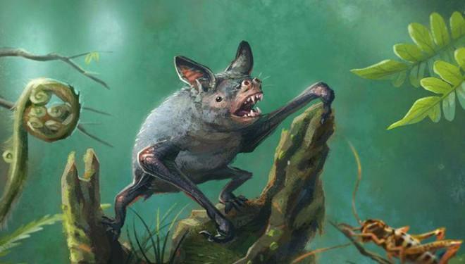 Гигантская летучая мышь напугала ученых до смерти