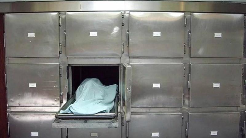 Бабушка жива Никто из родственников не удивился смерти 86-летней Милдред Кларк — возраст есть возраст. Старушку наскоро отпели и повезли в местный крематорий. По счастью, Милдред очнулась буквально за полчаса до кремации, шокировав и работников ритуальной службы и своих родственников.