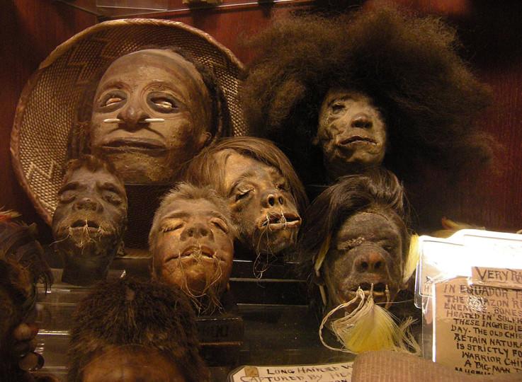 Сушеные головы Эквадор Эквадорские индейцы-хиваро — единственные в мире обладатели сакрального мастерства по изготовлению сушеных голов, так называемых тсантса. Конечно, на легальный рынок сейчас уходят только материалы из обезьяньих голов, а вот на черном вполне можно найти и человеческую.