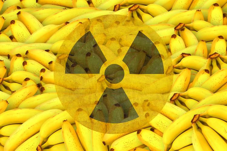 Бананы Забавно, но полезные бананы на самом деле являются одним из самых радиоактивных продуктов, поскольку содержат изотоп калий-40. Каждый съеденный вами банан помимо пользы дарит вам еще и небольшую дозу радиации.