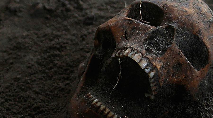 Костное масло В 1876 году некий доктор Майтре Мазур поселился в Нью-Йорке и развернул странный, но неожиданно прибыльный бизнес. Дело в том, что Мазур был единственным мастером в Северной Америке, кто мог полностью очистить человеческие кости от трупного запаха. Для американских врачей это было очень важно, ведь скелеты в качестве наглядного пособия приобретали все, и все же были вынуждены мириться с неприятным трупным запахом, пропитывавшим кабинет. Свой секрет Мазур никому не открыл до самой смерти.