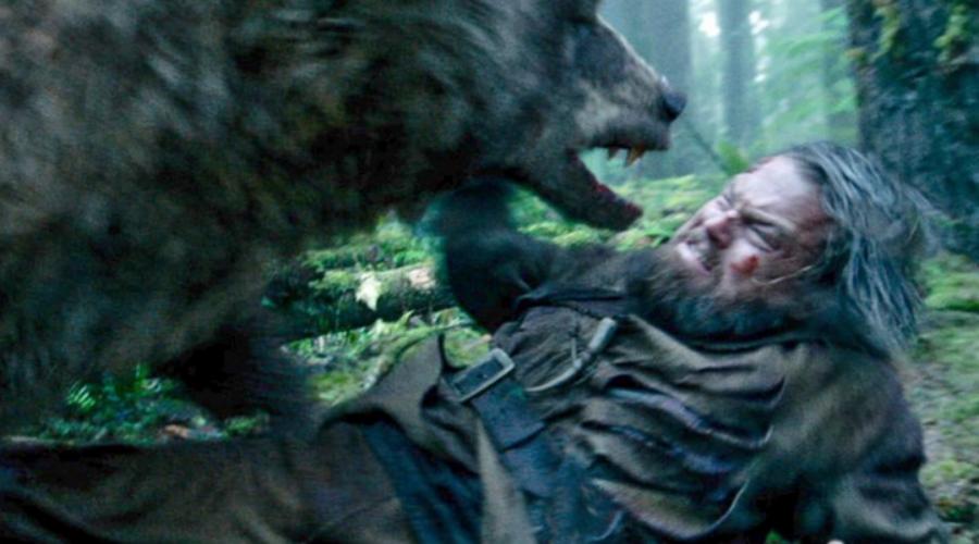 Добыча или угроза Постарайтесь не впадать в панику и трезво оценить, что собирается делать животное. Возможно, вы просто стоите у него на пути или создаете угрозу берлоге. Если медведь смотрит на вас как на угрозу, шансы спастись есть. А вот если медведь видит перед собой добычу, атаки избежать не удастся.