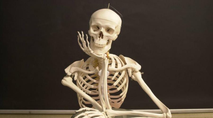 Лондонские мануфактуры Совсем иначе обстояло дело в Лондоне. Здесь врач мог пойти на виселицу только за самовольную эксгумацию тела, но как практиковаться врачу без наглядных пособий? Около 1899 года скелеты в Лондоне стоили баснословно дорого и были настоящей редкостью. Торговцы радовались кровопролитным сражениям, поскольку это позволяло пополнить свои склады новыми партиями костей.