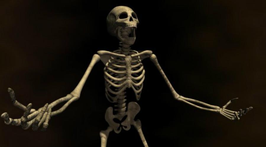 Торговцы смертью Пуританская Америка XIX века не очень-то была расположена к людям, построившим свое состояние буквально на торговле смертью. Большинство торговцев костями вынужденно скрывали свои лавки и мастерские под невинными вывесками. К примеру, Мордред Робейра, филадельфийский делец, для вида торговал парфюмерией, а на втором этаже магазина вел настоящее дело.