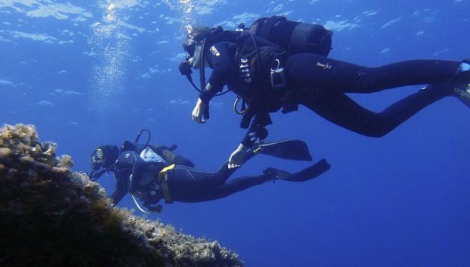 Бездна Красного моря напугала дайверов жуткими звуками