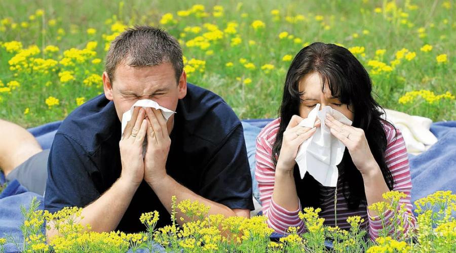 Аллергия Береза, ольха, орешник, всевозможные цветы — врачи называют около 100 растений, способных вызывать аллергию. И все они начинают цвести весной. Плюс, появляется пыль. Само собой, в такое время обострения просто не избежать и к нему лучше подготовиться заранее, проконсультировавшись со специалистом.