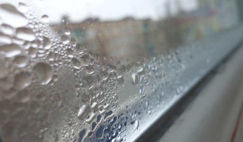Запотевшие окна Конденсат выступает на окнах при повышенной влажности. Многие люди просто привыкают видеть окна постоянно запотевшими и не обращают на это внимание — совершенно зря, поскольку именно такая ситуация характерна для домов, где уже завелась плесень.