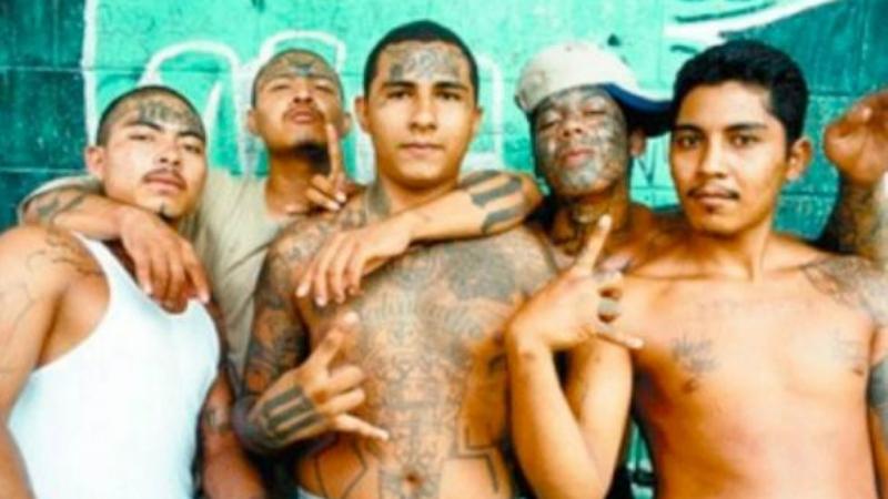 Войны картелей Распад колумбийских наркокартелей привел к укреплению мексиканских банд. Картель Синалоа, Картель Гольфо, Картель Хуареса, Картель «Тамплиеров», Тихуанский картель, Лос-Сетас — все они ведут кровопролитные войны примерно с 2006 года. Ситуацию осложняет прекрасное снабжение картелей оружием: у многих есть не только автоматическое оружие, но даже броневики. Хорошо оснащенные частные армии без страха вступают в бой с полицией и силами регулярной армии Мексики, притом правоохранители далеко не всегда выходят победителями.