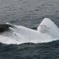 Экстремальные вслытия подводных лодок, которые сняли на видео