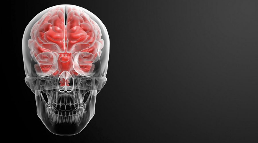 Что это такое «Тихим инсультом» медики называют ишемический некроз или инфаркт. Такое случается при закупорке сосуда. Обычно все происходит из-за оторвавшегося тромба, попадающего в среднюю мозговую артерию. В 37% ишемический инсульт приводит к смерти.