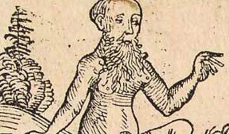 Макилхи Это вполне реальная народность, в свое время населявшая северную часть Эфиопии. Древние греки, а затем и римляне, отчего-то были уверены, что все макилхи — гермафродиты. Аристотель, к примеру, утверждал, что у макилхов растет одна женская грудь на правой стороне тела. Ему позднее вторил римский писатель Каллифанес, который и вовсе уверял, что макилхи «объединяют два пола в одном». Современные историки не находят ни одного доказательства этим удивительным свидетельствам.