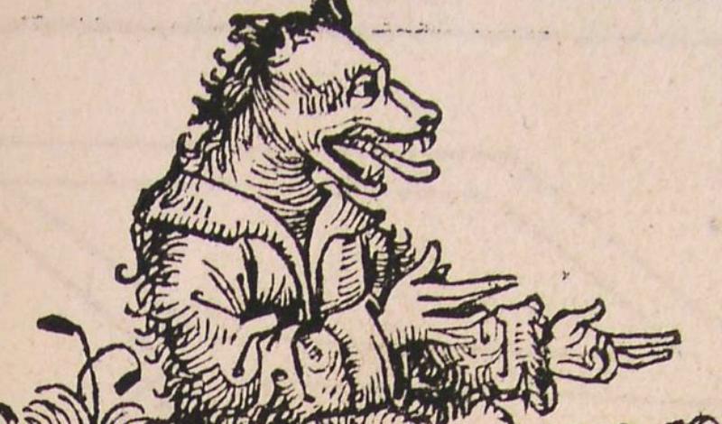 Калистрии Истории о псоглавцах вообще довольно распространены. Древнегреческий путешественник Ктесий уверял, что встретился в горах Индии с племенем калистрии. Через 200 лет их же (и в том же самом месте) повстречал другой грек по имени Мегасфен. В эпоху династии Тан истории о псоглавцах также встречались часто, правда здесь их звали супанами. И, наконец, удивительнее всего смотрится в этом ряду сообщение от Марко Поло, который вроде как повстречал калистрии на острове Ангмана.