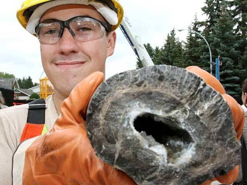 Ископаемый динозавр Окаменелость этого динозавра возрастом примерно 70 миллионов лет нашли в канализационном тоннеле в 2010 году, Канада. Позже палеонтолог из Университета Альберты подтвердил, что окаменелая кость динозавра принадлежала дальним родственникам тиранозавра.