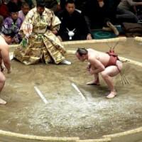 Обычный боец победил силой огромного сумоиста