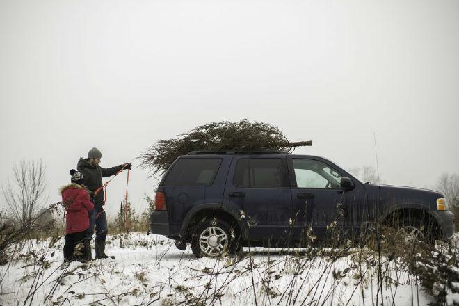 Как возить елку на крыше авто