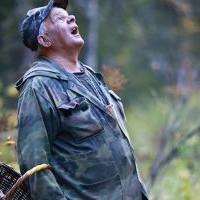 Как не заблудиться в лесу: хитрости егеря