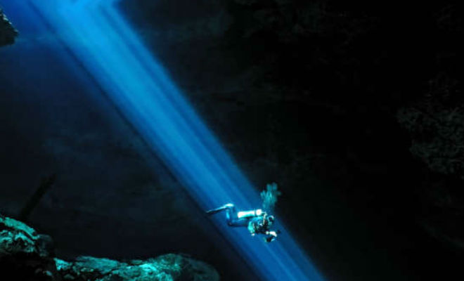 В мексиканской пещере нашли зуб мегалодона