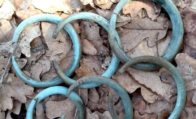 Артефакты племен Сибири: черный копатель нашел их в следах лесовоза